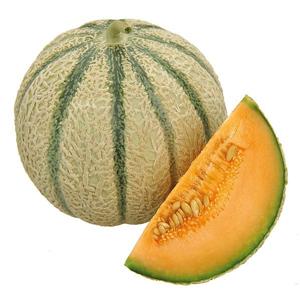 Melon / Pastèque M96